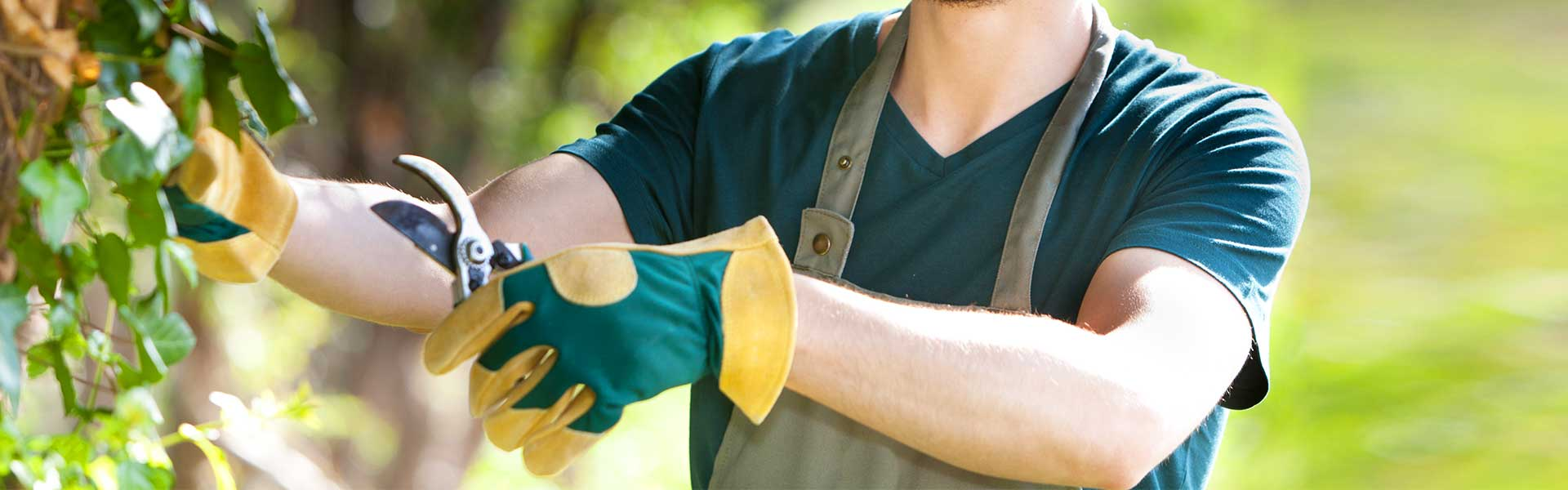 The best gardening services and top quality lawn care services!